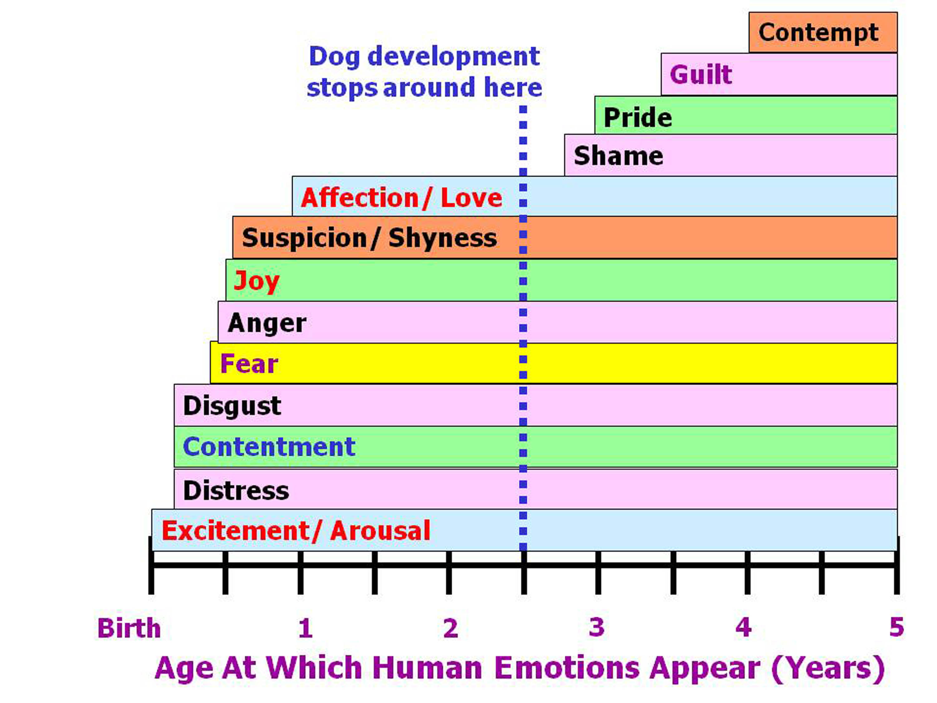 Which emotions do dogs actually experience psychology today nvjuhfo Choice Image