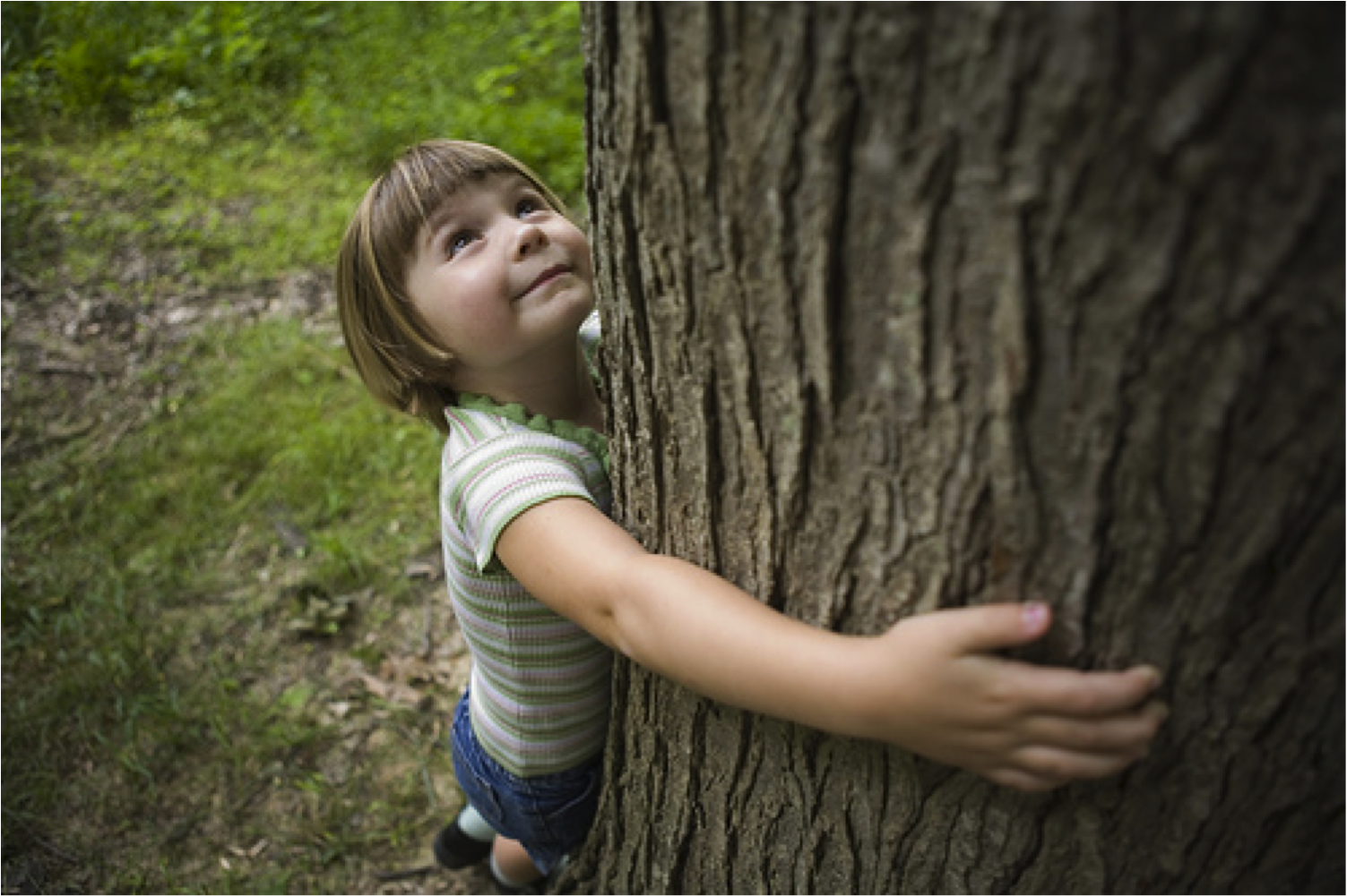 ways to nurture your children s connection to nature 8 ways to nurture your children s connection to nature psychology today