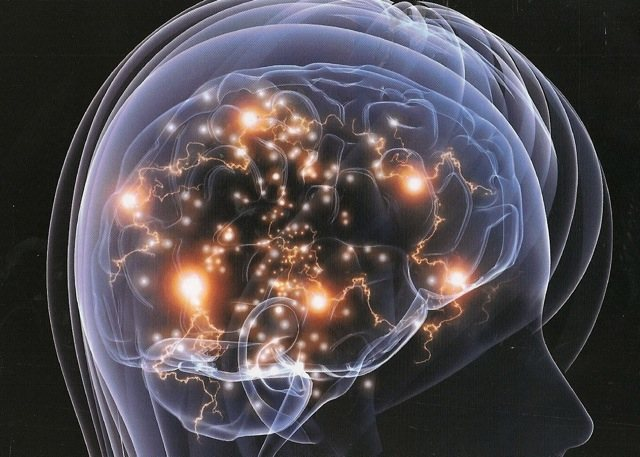 neuroplasticity is most evident in which of the following circumstances
