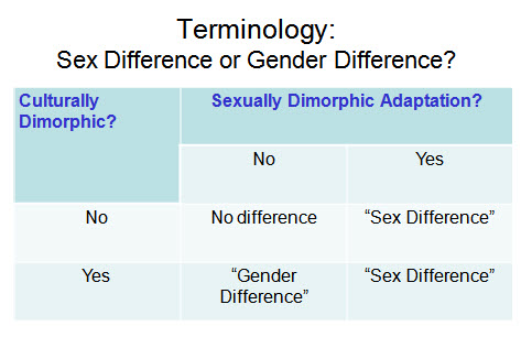 Gender sexuality differences