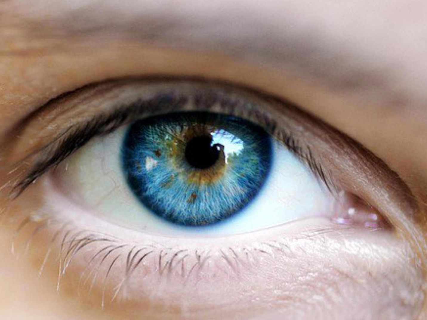 the neuroscience of making eye contact psychology today uk