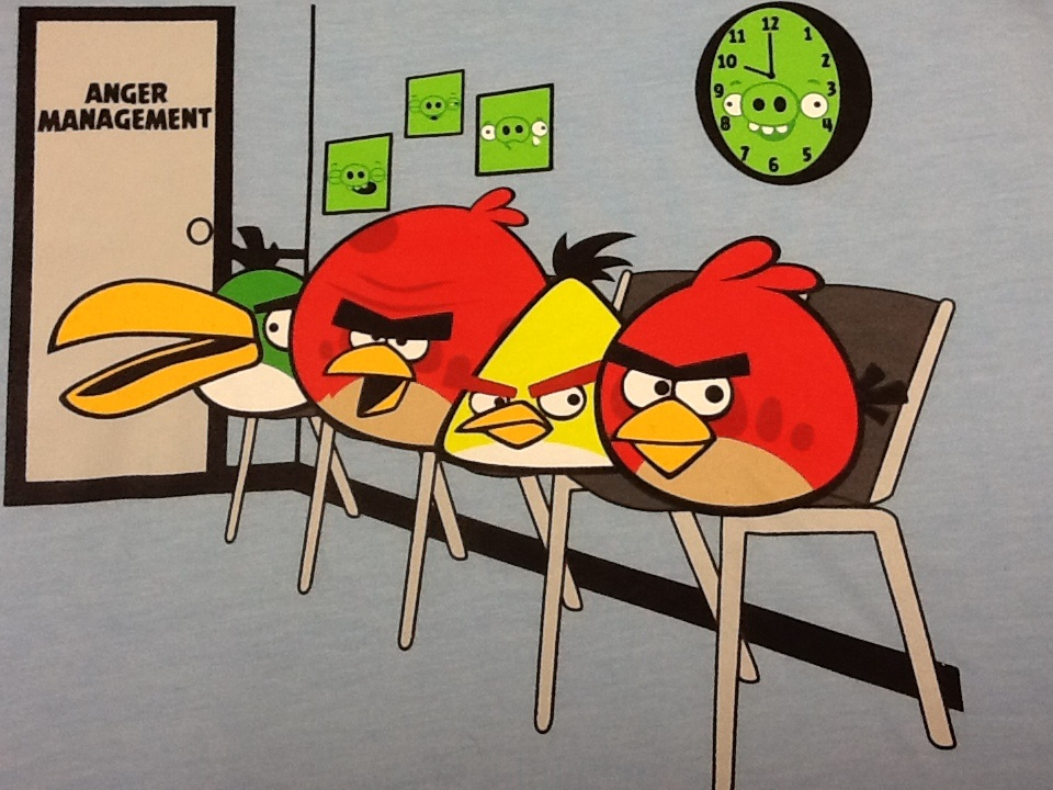 Image result for manage your anger angry birds