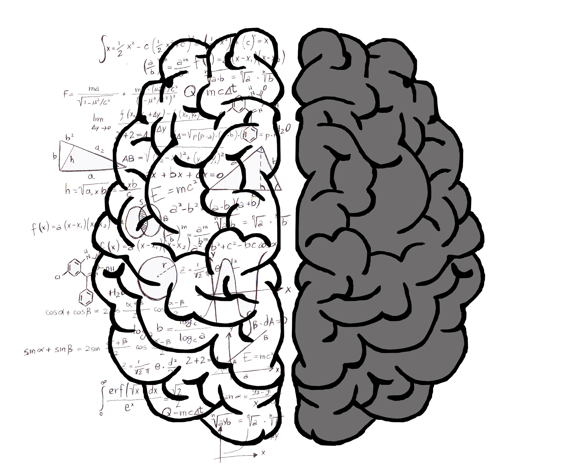 Left Brain-Right Brain Study Debunks a Decades-Old Neuromyth | Psychology Today