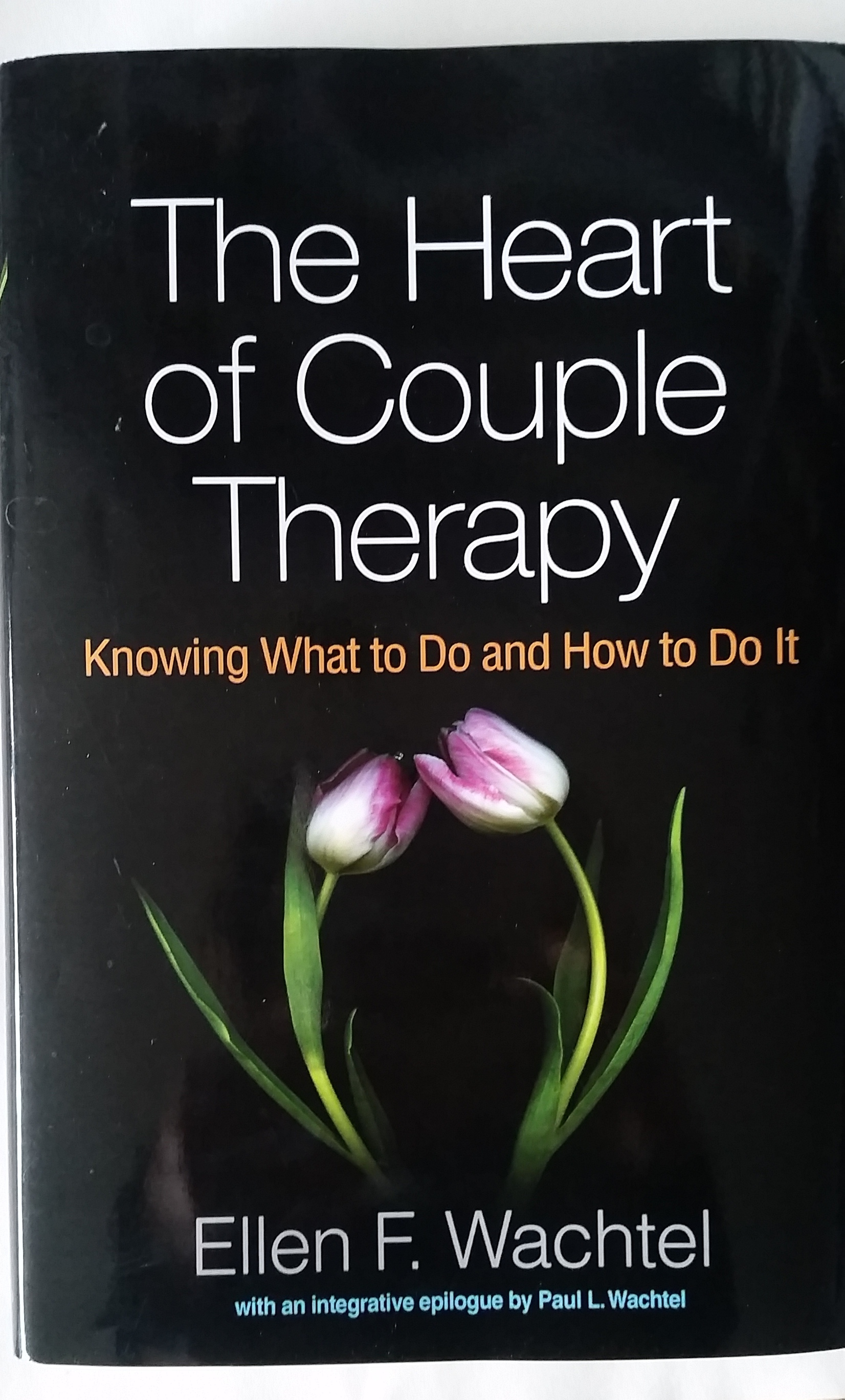 Couples Therapy 15 Essentials That The Best Therapists Do
