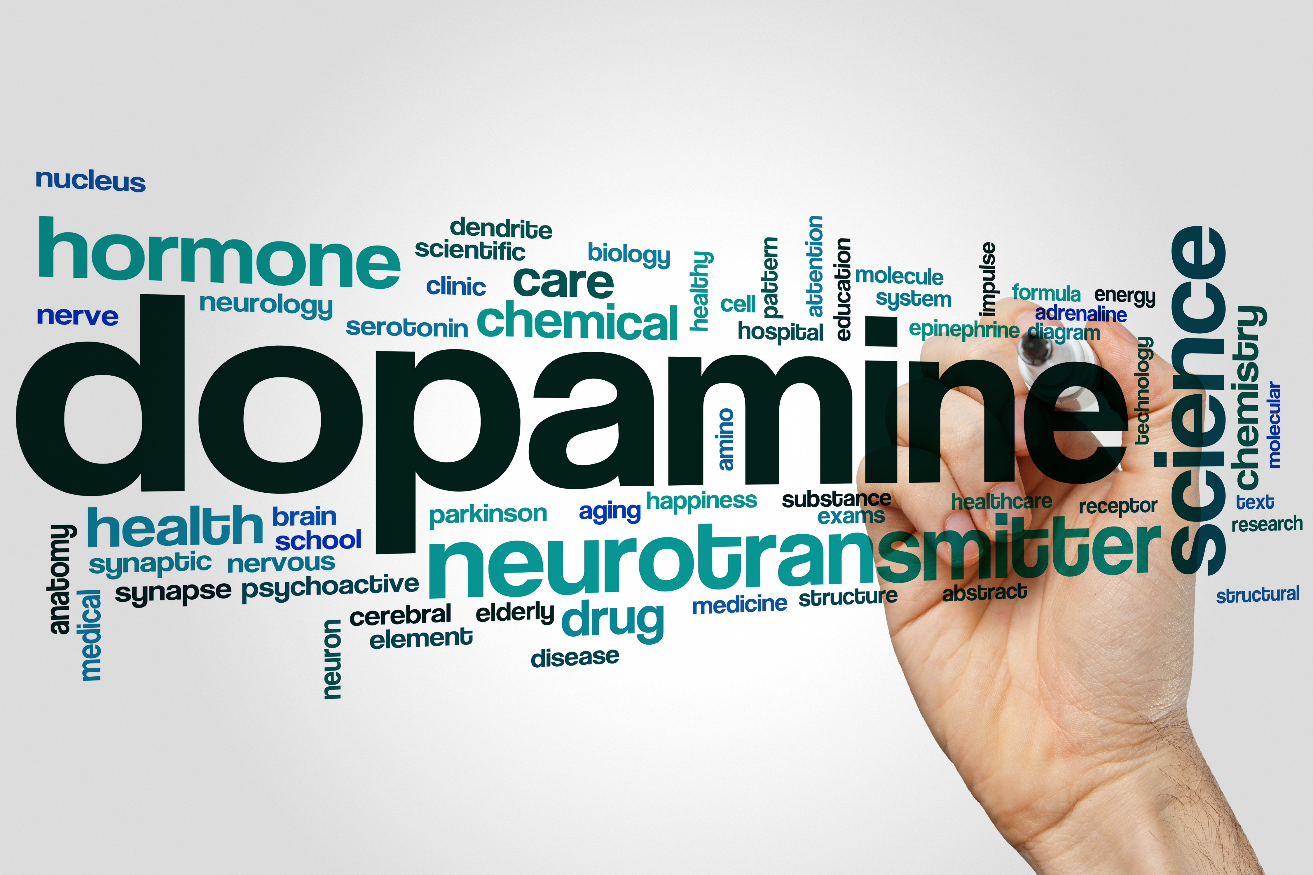 The Dope On Dopamine Psychology Today Cool Circuits Puts Your Brain Muscle To Test