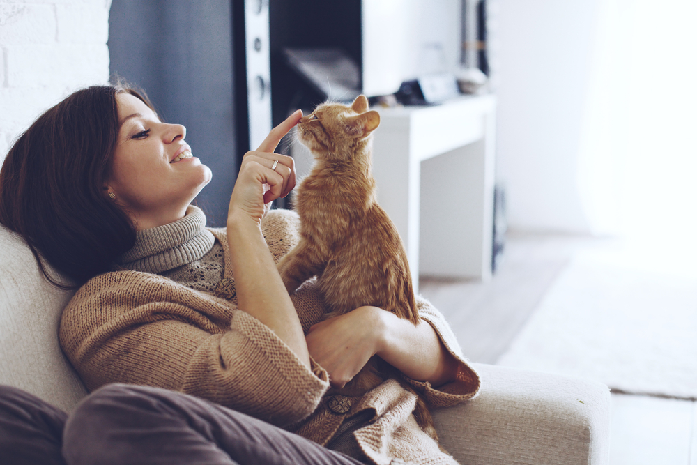 How Do You Talk to Your Cat?   Psychology Today Canada