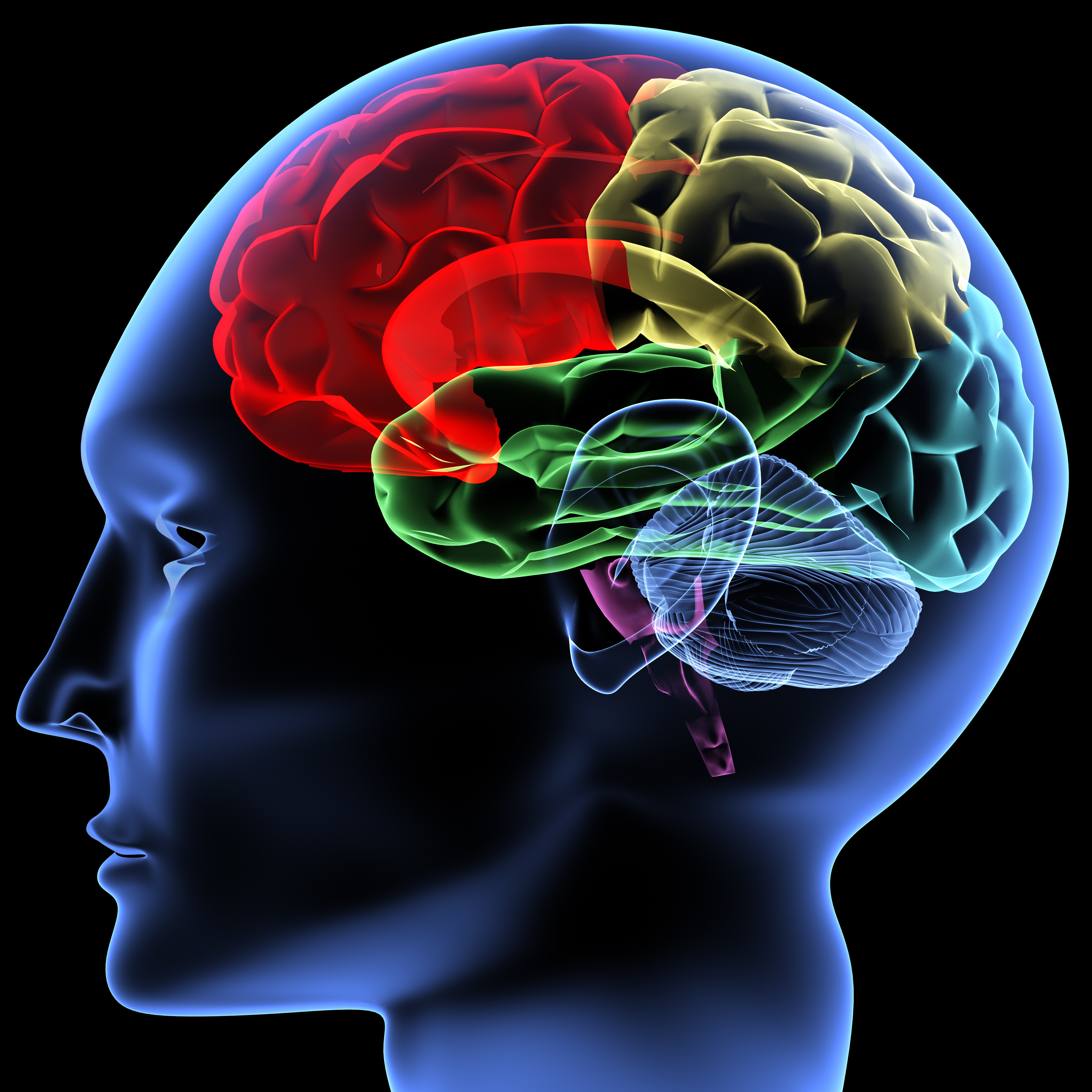 A Scan To Measure Your Brain Age Buyer Beware Psychology Today