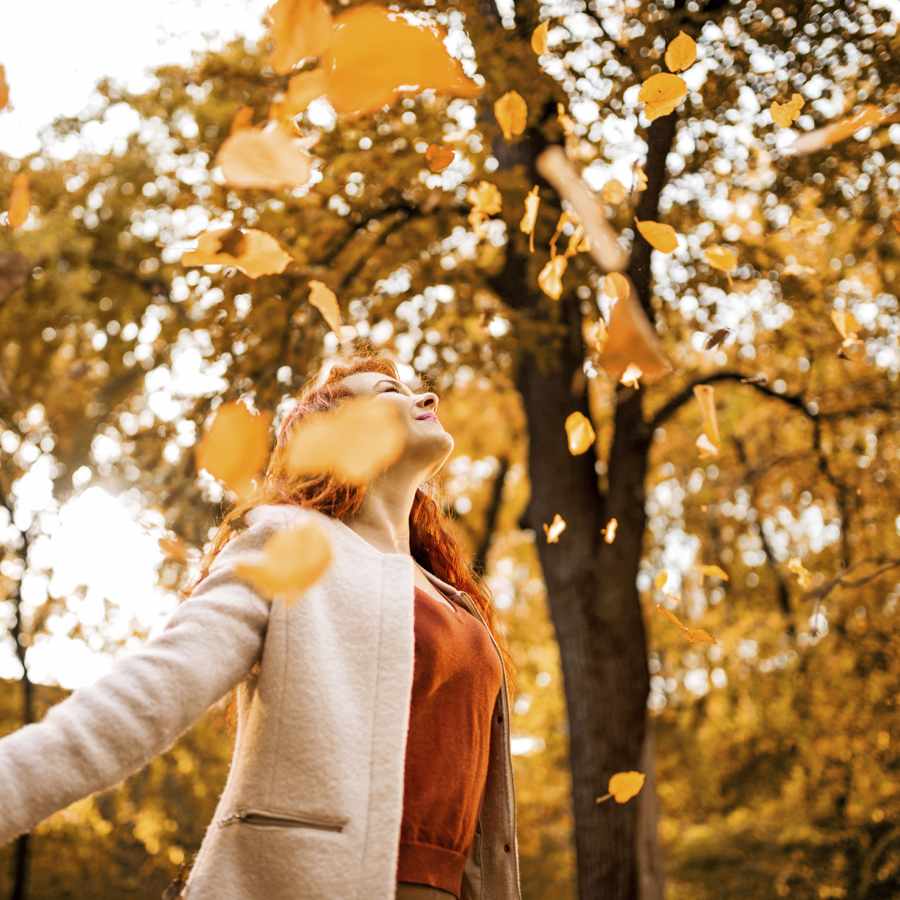 How Autumn Leaves Color Our Inner Lives Psychology Today
