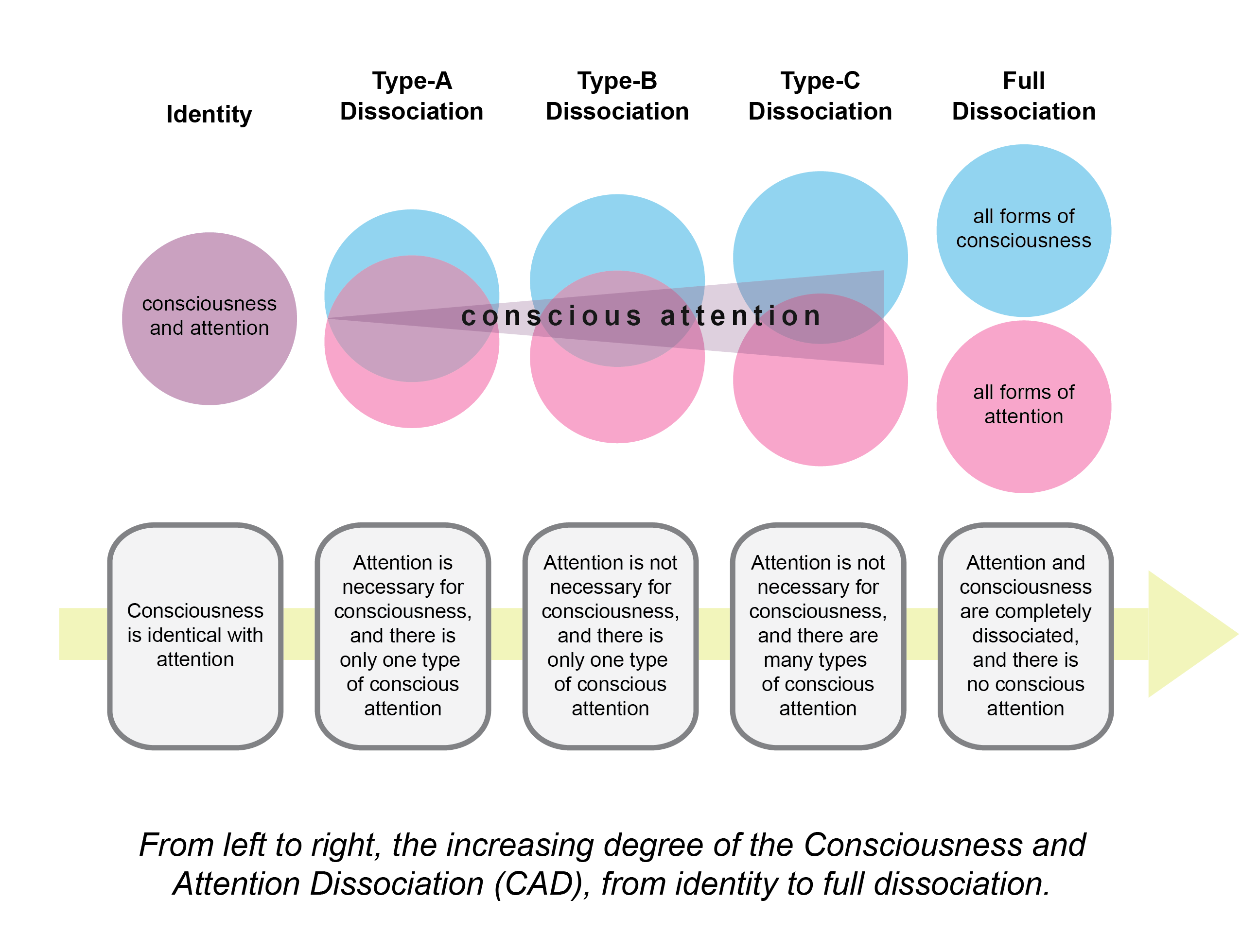 Consciousness in psychology: features, structure, functions 42
