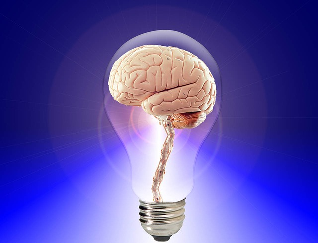 Alluring Brain Science Stale Creative Ferment Or Both