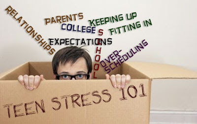 Of teen stress sources