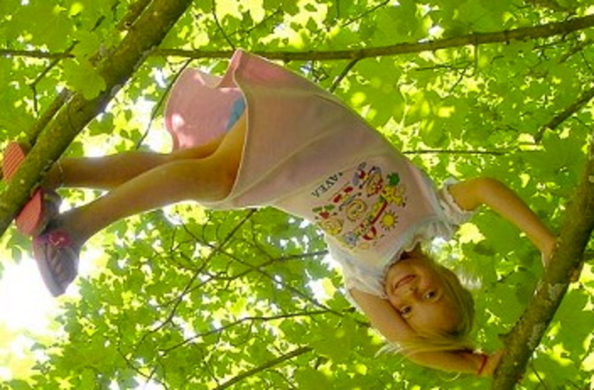 Free Play Is Essential for Normal Emotional Development | Psychology