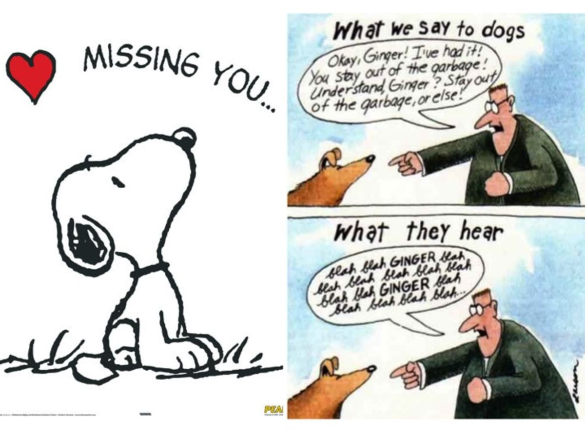 The Two Meanings of Missing Each Other | Psychology Today