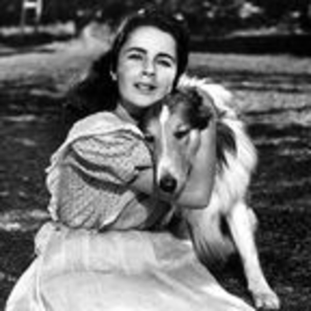 Elizabeth Taylor and Her Life with Dogs | Psychology Today