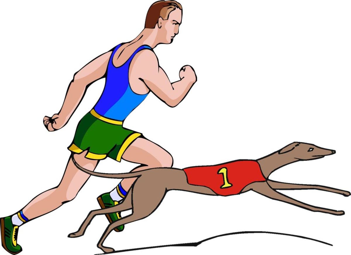 Dogs Versus Humans in the Olympic Games | Psychology Today