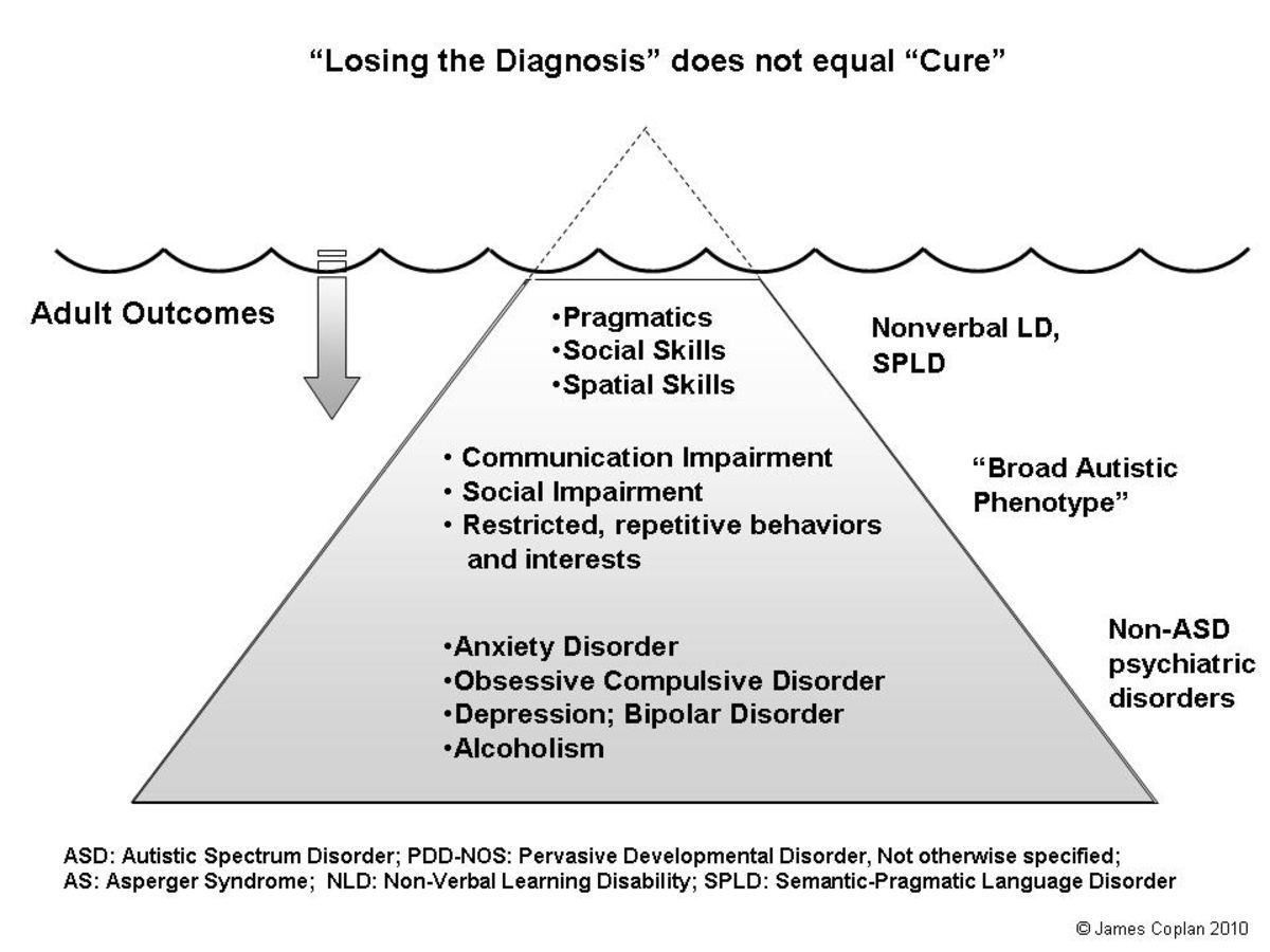 017 Losing the ASD diagnosis does not equal