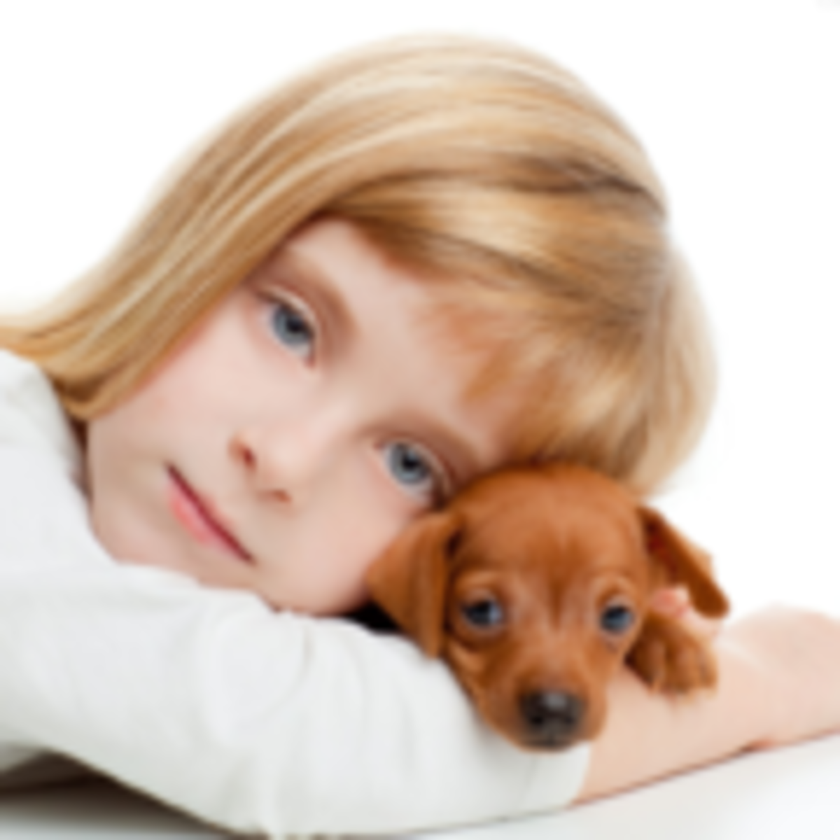 Why Kids With Pets Are Better Off Psychology Today