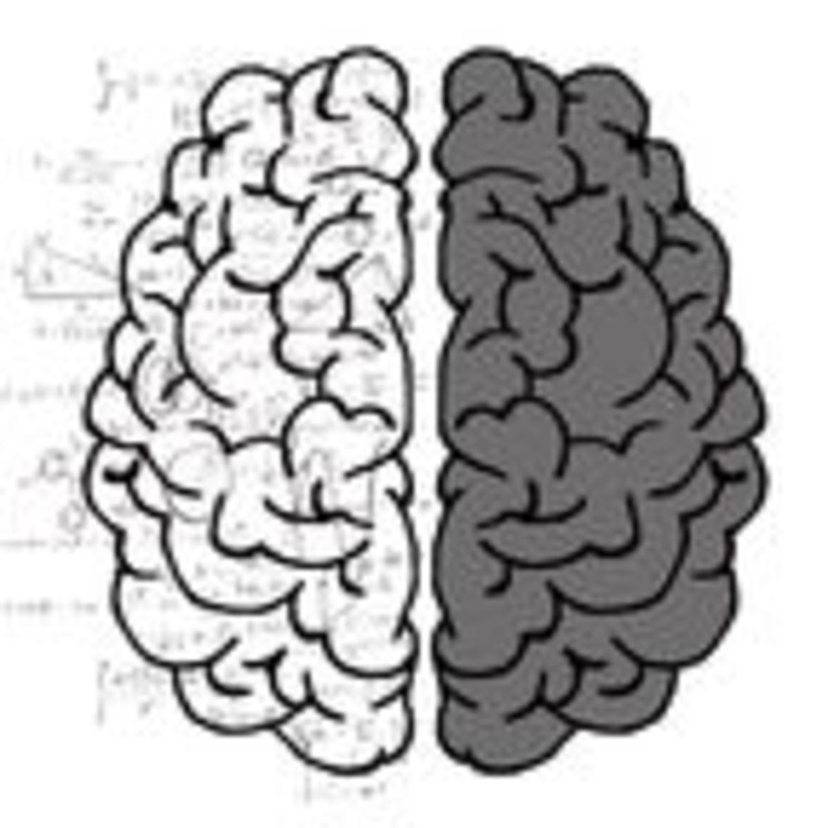 Left Brain-Right Brain Study Debunks a Decades-Old Neuromyth