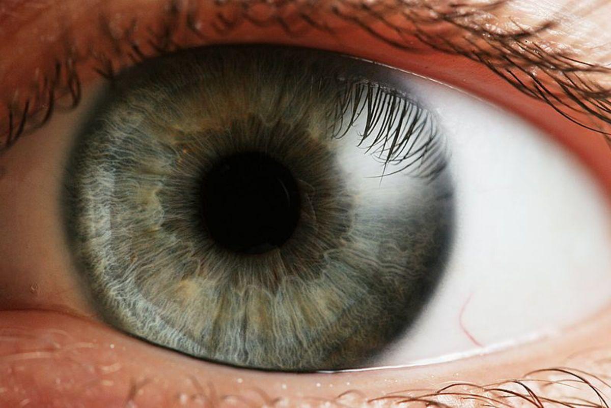 Pupil Size Offers an Eye Opening Window Into Deep Sleep