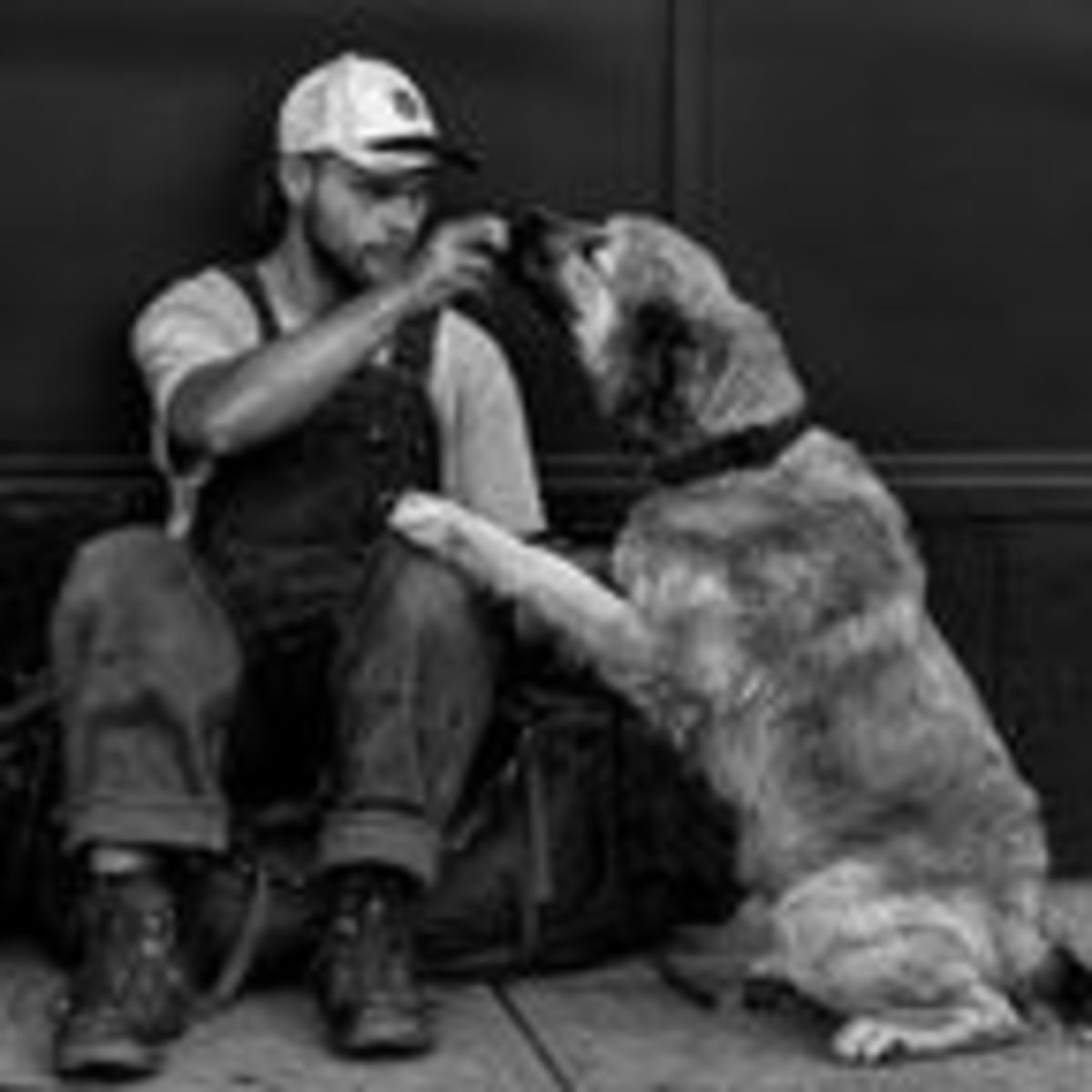 Among Homeless People, Dogs Eat First and