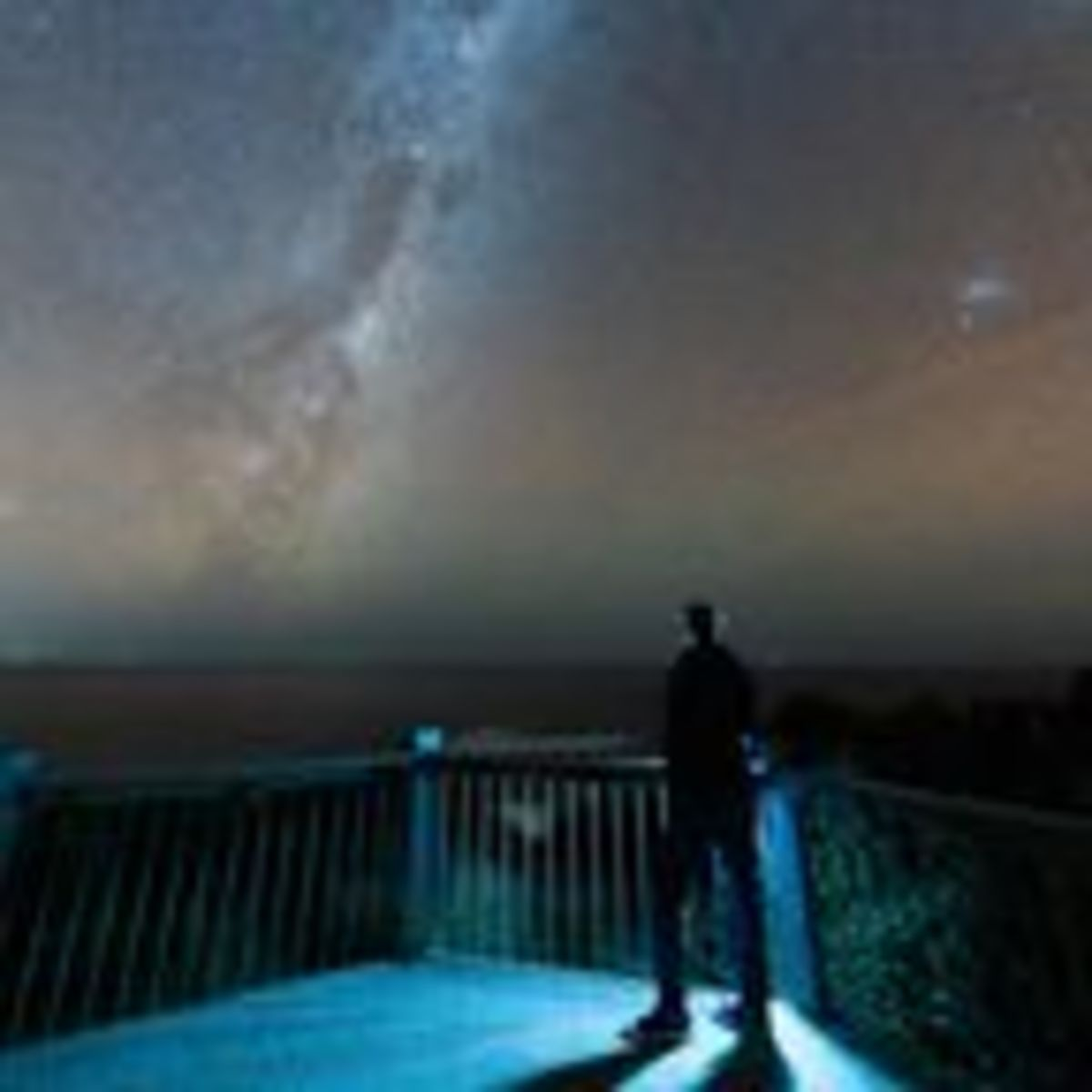 Does the Universe Have a Purpose?
