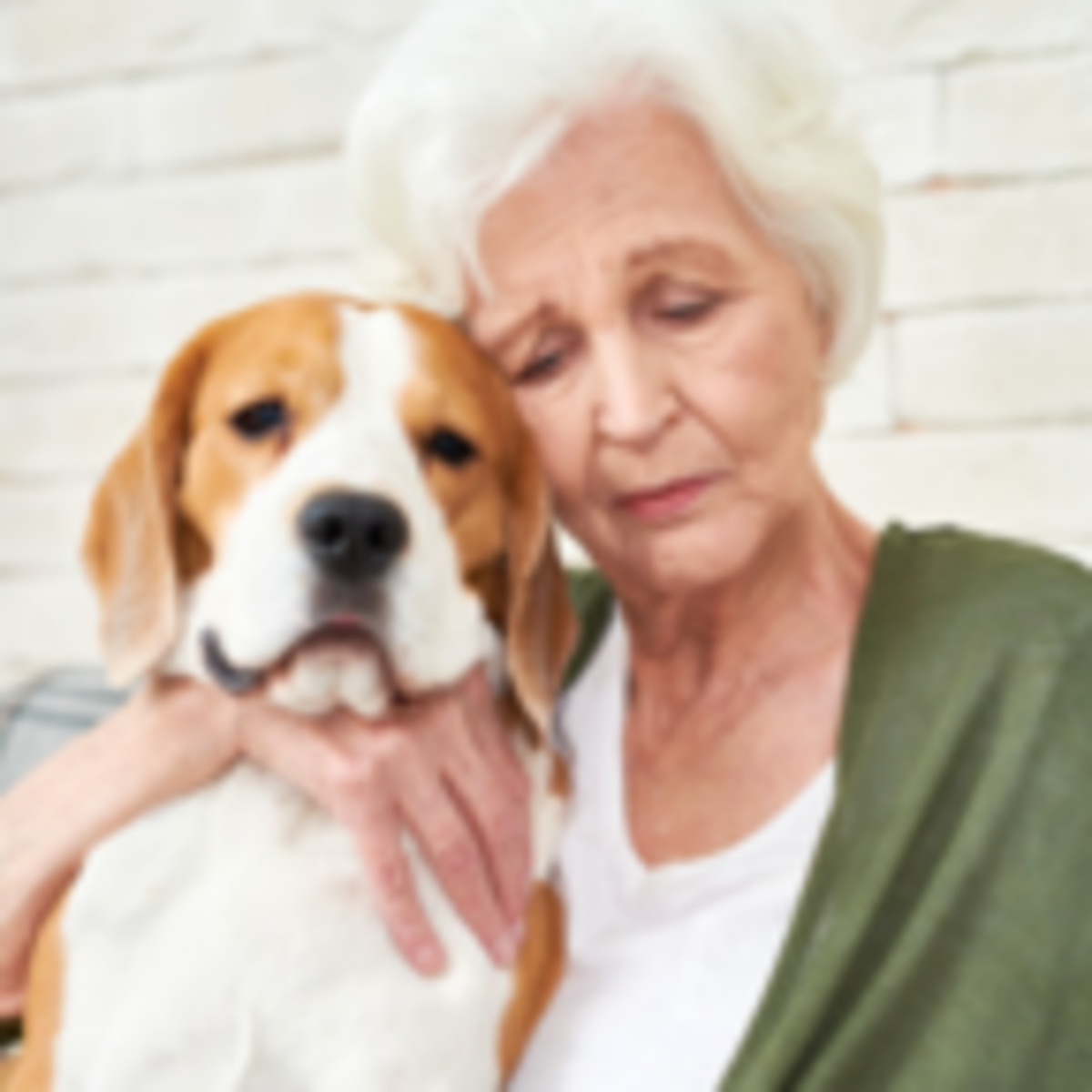 The Sad Truth About Pet Ownership And Depression Psychology Today