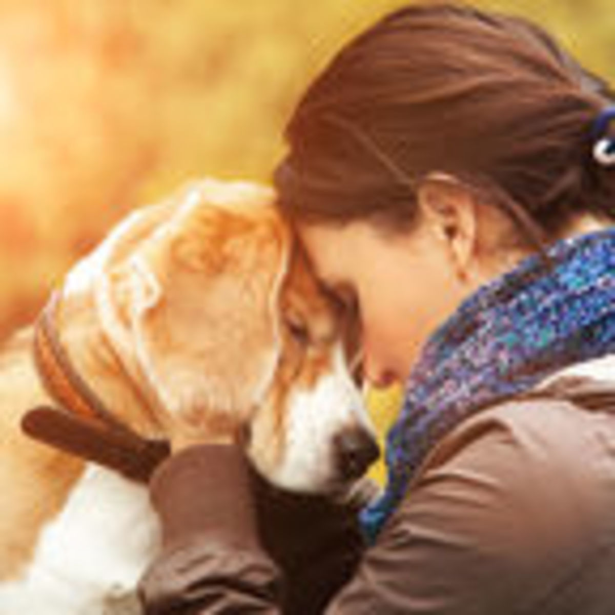 Tragic, Sudden, Unexpected: Grieving for Traumatic Pet Loss