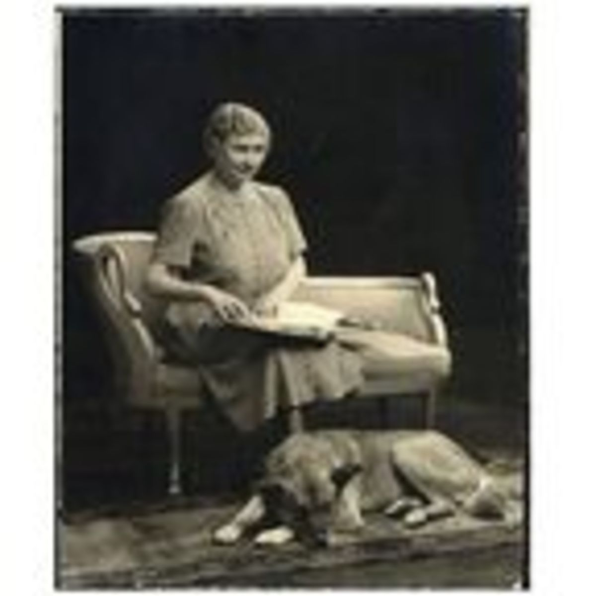 Helen Keller and the First Akitas in the United States