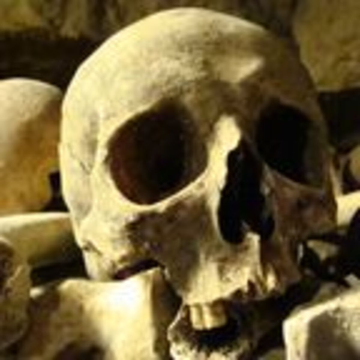 Humans Are Genetically Predisposed to Kill Each Other   Psychology Today