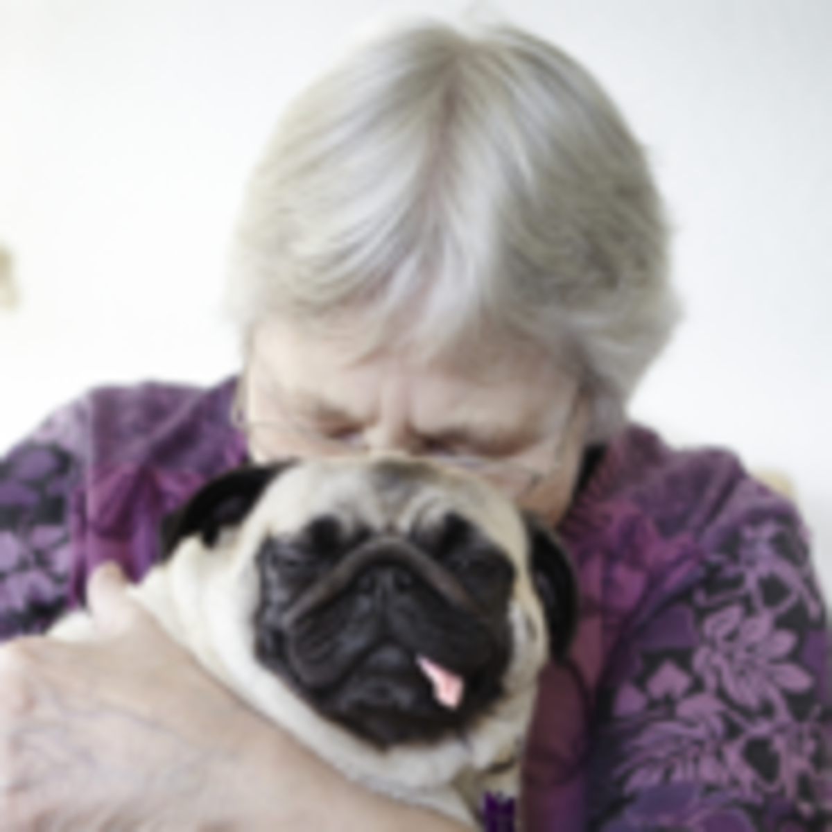 Therapy Dogs or Robots for Nursing Home Residents? | Psychology