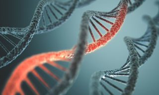 © Kts | Dreamstime.com - DNA Structure Photo