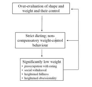 Christopher Fairburn 2008, Cognitive Behavior Therapy and Eating Disorders (p. 21)