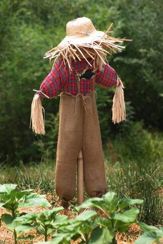 Scarecrow) via Wikimedia Commons