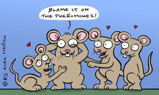Original Cartoon by Alex Martin