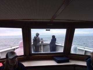 Rachel Clark, Straight of Juan de Fuca, Salish Sea. June 2018.