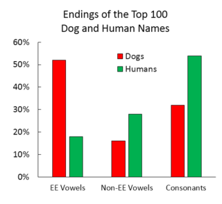 Fido Or Freddie Why Do Some Pet Names Become Popular