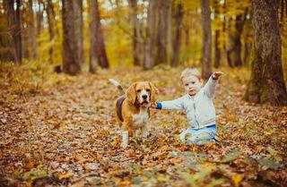 Oksana Shufrych/Shutterstock