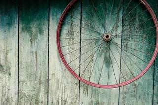 Nina Lishchuk_Shutterstock