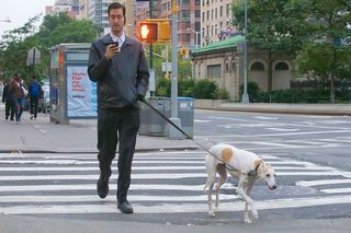 How Many People Don't Walk Their Dogs? | Psychology Today
