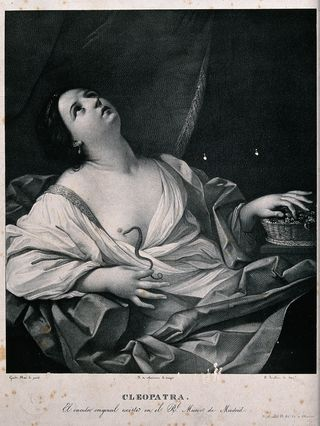 Lithograph by J. Madrazo y Agudo after a painting by Guido Reni.  Wellcome Images