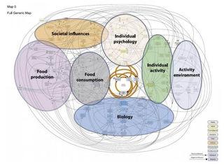 Blundell, John & Baker, Jennifer & Boyland, Emma & Blaak, Ellen & Charzewska, Jadwiga & Henauw, Stefaan & Frühbeck, Gema & Gonzalez-Gross, Marcela & Hebebrand, Johannes & Holm, Lotte & Kriaucioniene, Vilma & Lissner, Lauren & Oppert, Jean-Michel & Schindler, Karin & Silva, Ana & Woodward, Euan. (2017). Variations in the Prevalence of Obesity Among European Countries, and a Consideration of Possible Causes. Obesity facts. 10. 25-37. 10.1159/000455952