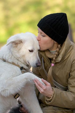 Emotional Contagion From the Heart Between Humans and Dogs