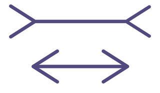 Illusionindex