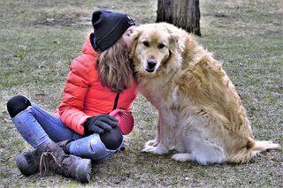 dog-4958432_1920 Pixabay Scottslm