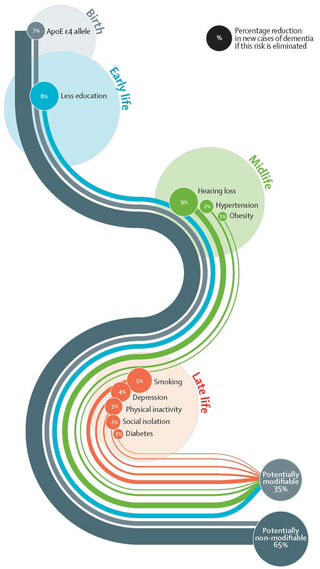 Lifestyle  health  Diet The Lancet Commission on Dementia Prevention, Intervention, and Care