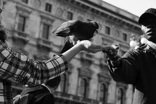 Marco Giumelli/Flikr
