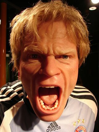 Oliver Kahn Man Human Image by Hermelin from Pixabay.