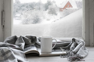 Shutterstock/Svetlana Lukienko
