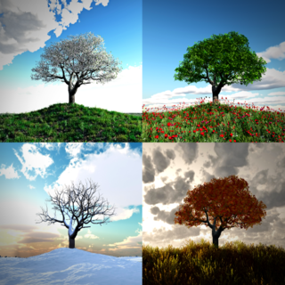 Photobank gallery/Shutterstock