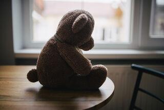 内纳德・斯托伊科维奇/ Flickr
